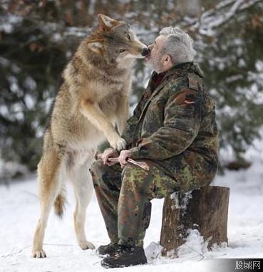 德国男子 与狼共舞 40年 现实版的狼人传说