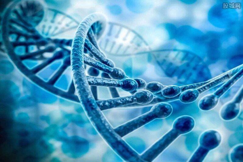基因测序概念股