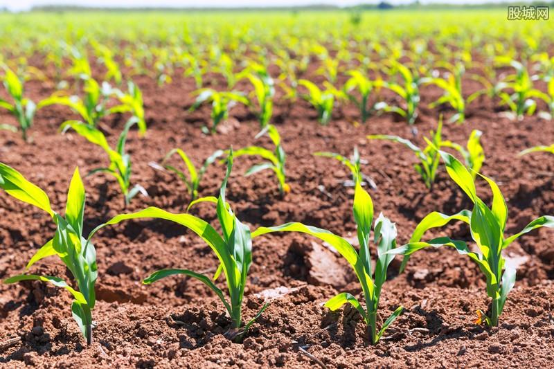中国土壤修复产业起步