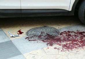 陕县车祸致6死1伤 事故遇难者大多为陕县官员