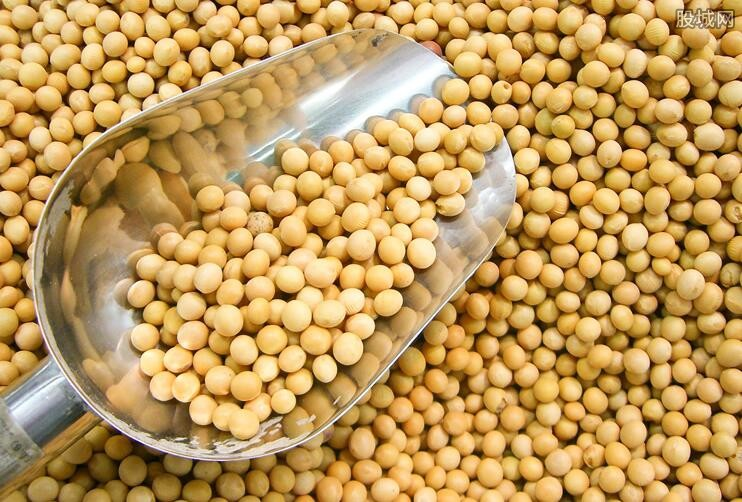 美国大豆多少钱一斤