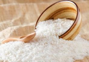 中国允许大米出口吗 国内粮食产量不断提升储备充足