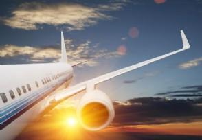 7月中美全面恢复航班吗相关消息是这样显示的
