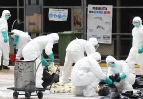 香港疫情最新消息属于高风险区还是低风险区?