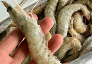 厄瓜多尔冻南美白虾外包装检出新冠病毒还能吃吗?