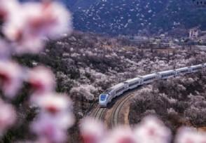 沙特为啥感谢中国?因中方专家帮忙建高铁