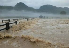 2020年抗洪救灾概念股有哪些可关注这些龙头股票