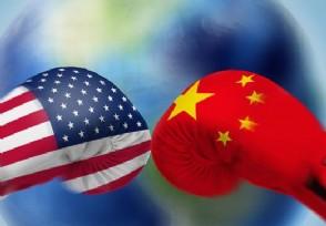 美国人评价中美局势 称蓬佩奥是特朗普甩锅中国的狗