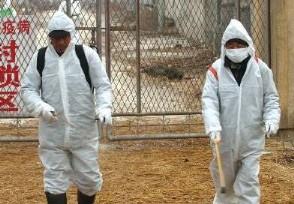厄瓜多尔确诊人数今天该国疫情最新状况公布