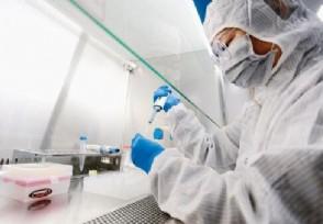 全世界疫情排名一览表 美国疫情死亡人数逼近20万