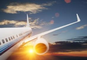 菲律宾航空宣布裁员 数量约占员工总数的35%