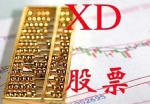 股票xd开头是什么意思股民请看这个炒股基础知识