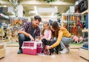 宠物用品店赚钱吗开店能不能年入百万?