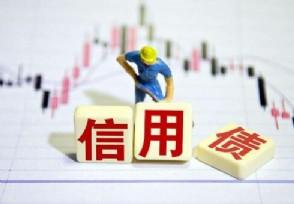 信用债可以公开发行吗?和可转债利率债的区别是什么