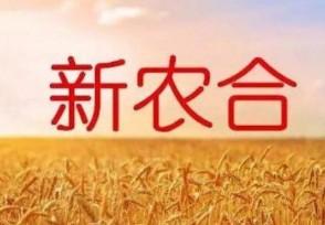 新农合算不算社保 揭两者的区别和关系