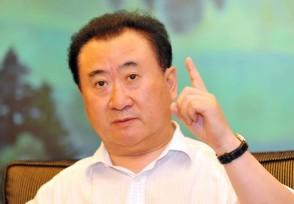 王健林一年能赚多少钱 2021年身价多少亿