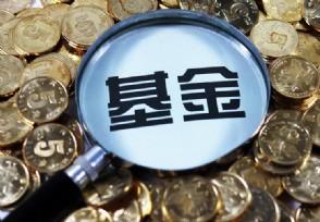 庄羽正式成立反剽窃基金保护著作者的合法权益