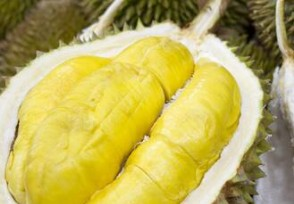 榴莲成中国进口量最大的水果同比增长78%