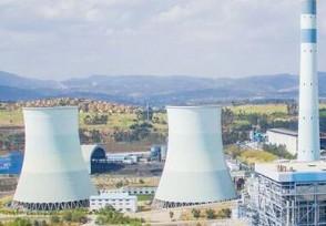 美国得州最大电力公司申请破产 原因是什么?