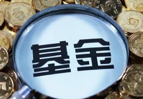 新手如何投资基金要了解一些入门知识和技巧