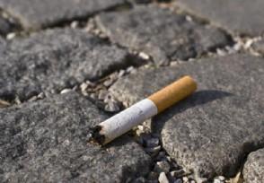 李子柒旗下产品被指吃出烟头 食品安全问题引担忧