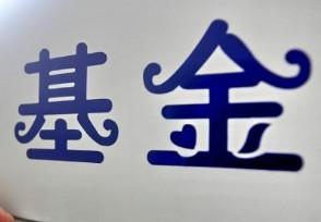 中国最大的基金公司这家基金公司实力强大