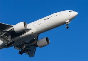 印度航空计划增加直飞美国航班 将从5月11日起增加