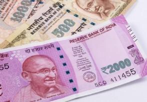 印度的主要经济支柱是什么目前发展现状怎样