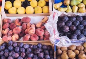 开水果店要多少钱需要办理什么手续?