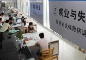 失业保险可以补缴吗领取条件有哪些?