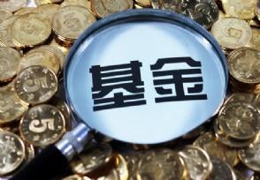 小白买基金入门知识有哪些知道是怎么赚钱的?