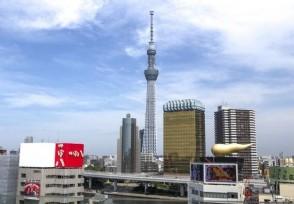 去日本买什么最值得