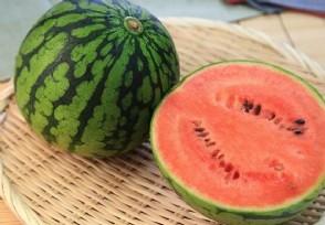 夏天常吃哪些瓜对身体大有好处