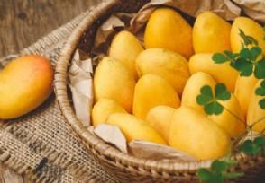 被称为是金牌水果的水果有哪些