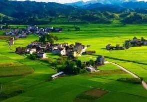 农村无房屋申请建房的条件有哪些