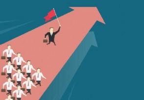 如何判断一个基金经理是否优秀