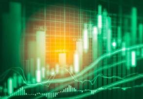 股票财报主要看什么数据