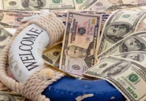 怎么查询已购电子式国债