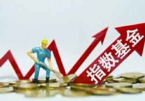 指数基金和股票基金有什么区别