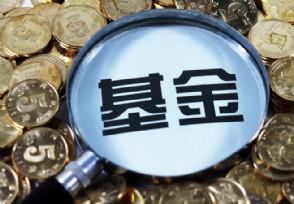 新手投资基金都有哪些小技巧