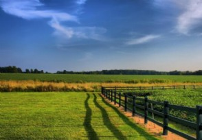 2021家庭农场补贴需要什么条件