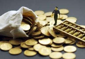 什么是偏债型基金